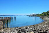 Tacoma during summer time — Foto Stock