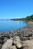 Tacoma during summer time — Stock Photo
