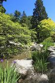 Japanese Garden in Seattle — Stock Photo