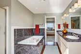 Modern bathroom interior in master bedroom — Stock Photo