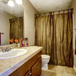 Bathroom with brown cabinet and mustard curtains — Stock Photo #50121335