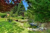 Grüne garten mit teich. landschaft-ideen — Stockfoto