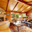 Luxury log cabin house interior. Living room with fireplace and — Stock Photo #51704935