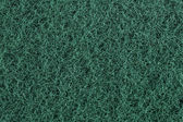 Green scourer — Stock Photo