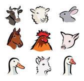 Farm animals, set of vector icons — Stock Vector
