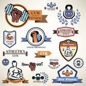 Gym, fitness emblems collection — Stock Vector