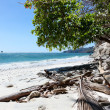 Costa Rican Beach — Stock Photo