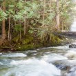Rushing River — Stock Photo