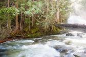 Rushing River — Stock Photo