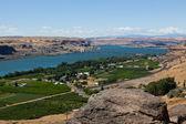 Columbia River Landscape — Stock Photo