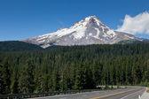 Mount Hood with Road — Stock Photo