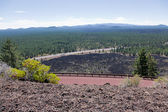 View from Newberry Volcano — Stock Photo