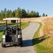 Golf Cart on Path - Stock Photo