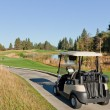 Golf Cart at Natural Course — Stock Photo