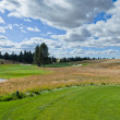 Stok fotoğraf: Landscape of Golf Course Hole