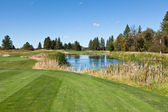 Tee off over Pond — Stock Photo