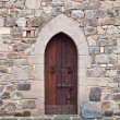Medieval Door with Lock — Stock Photo