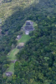 Mayan Temple Site — Stock Photo