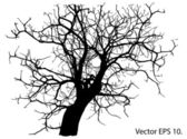 Dead Tree without Leaves Vector Illustration Sketched, EPS 10. — Stock Vector