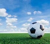 Soccer Football on the soccer field. — Stock Photo