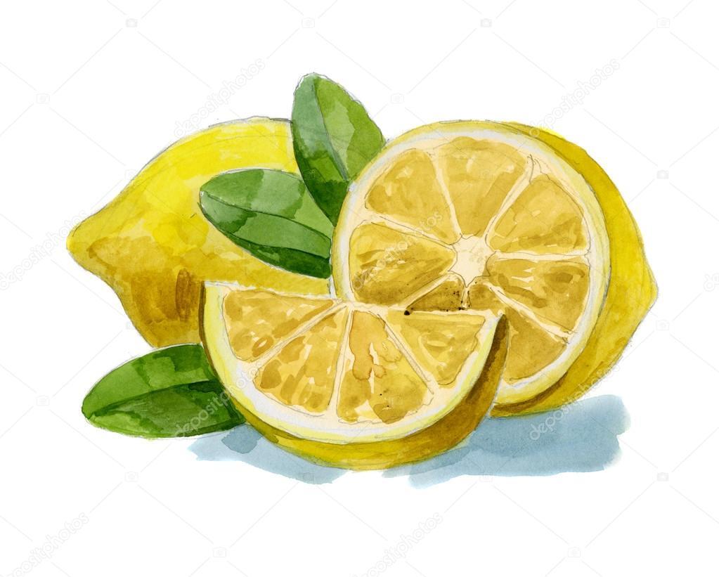 Рисунок апельсины
