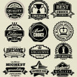 Premium quality badges — Stock Vector