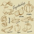 Hand drawn vegetables — Stok Vektör #33136117