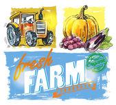 Vector fresh farm — Stock Vector