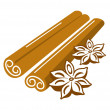 Cinnamon and anise — Stock Vector #44824099