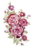 Watercolor illustration 00404 — Stock Photo