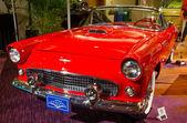1956 Ford Thunderbird — Stock Photo