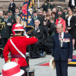 Toronto Bicentennial Commemoration of the Battle of York - Stock Photo