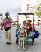 Small Business Owner in Cuba — Stock Photo