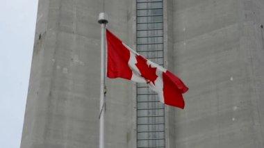 CN Tower in Toronto — Stock Video