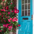 Stock Photo: Colorful house door surrounded by flowers. City's detail of architecture. Beautiful exterior door of house in city