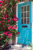 Colorful house door surrounded by flowers. City's detail of architecture. Beautiful exterior door of a house in the city — Fotografia Stock