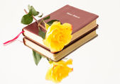 花と聖書 — ストック写真