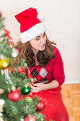 Armar un árbol de Navidad — Foto de Stock