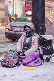 Toronto Under a Snowfall — Stockfoto