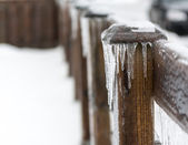 Details of an ice storm in Toronto,Canada. Beautiful white christmas — Стоковое фото