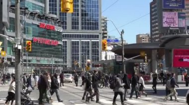 Pedestrian crossing in downtown Toronto,Canada — Stock Video