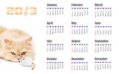 2013 Kalender — Stockfoto