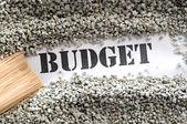 бюджет--сокровище слово серии — Стоковое фото