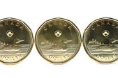 One dollar coin — Стоковое фото