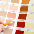 Pointing to sample color chart — Stock Photo #25769177