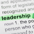 Stock Photo: Leadership highlighted in dictionary