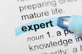Blue marker on expert word — Φωτογραφία Αρχείου