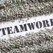 Teamwork -- Treasure Word Series  — Stock Photo