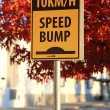 Speed bump road sign — Stock Photo #35515899