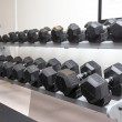 Stock Photo: Dumb bells lined up in fitness studio